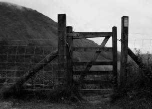 gate 1 b+w