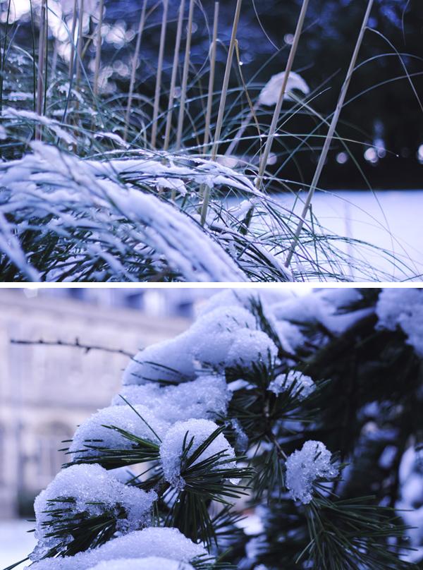 snow091 copyx