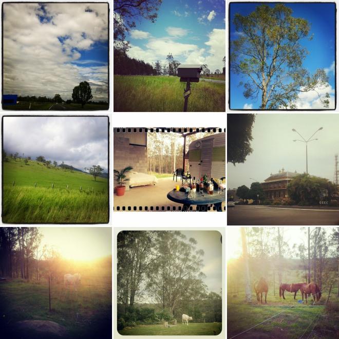 grafton snapshots