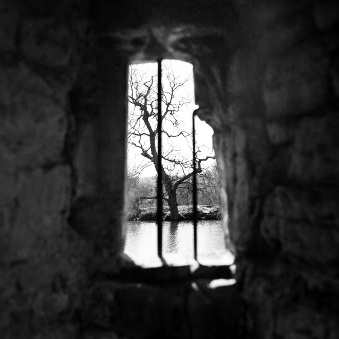 BodiumCastle_TreeInTheWindow